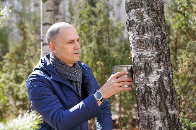 Na Białorusi już pozyskują sok brzozowy /©123RF/PICSEL