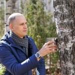 Na Białorusi już pozyskują sok brzozowy