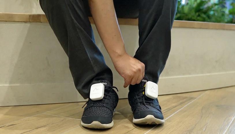 Na butach są umieszczone specjalne czujniki /Honda/Ferrari Press/East News /East News