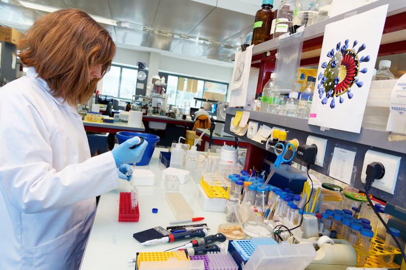 Na całym świecie trwają prace nad szczepionką na koronawirusa /Sylvain Lefevre /Getty Images