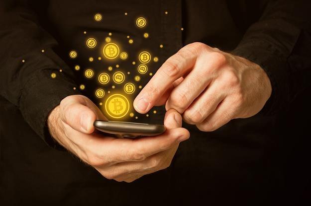 Na cenę bitcoina należy patrzeć w szerszej perspektywie /©123RF/PICSEL
