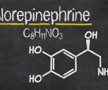 Na co działa noradrenalina i co oznacza?