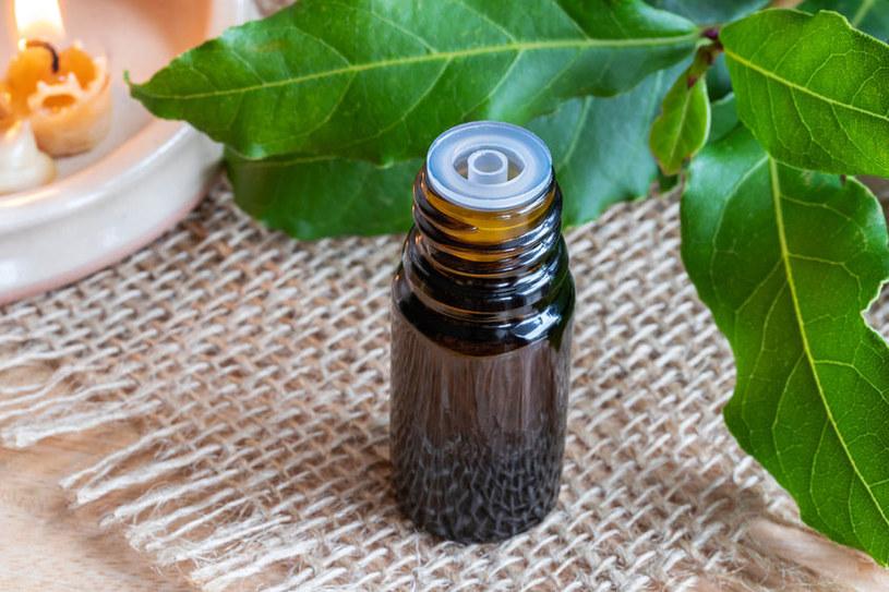 Na co pomaga olej laurowy? /©123RF/PICSEL