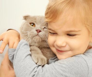 Na co zwrócić uwagę wybierając kota dla dziecka?