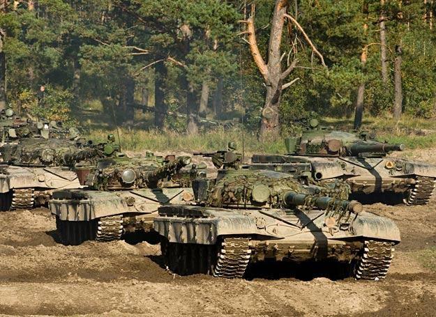 Na ćwiczeniach Anakonda 2010 /fot. Adam Roik, Combat Camera DOSZ /