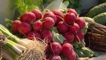 Na czym dokładnie polega owocowo-warzywna dieta dr Dąbrowskiej?