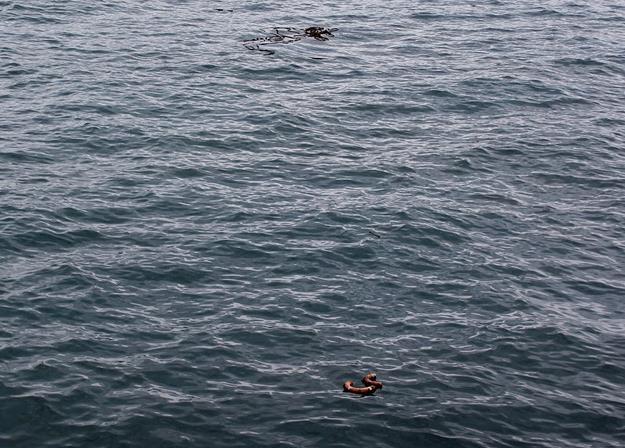 Na dnie Atlantyku mamy działkę /AFP