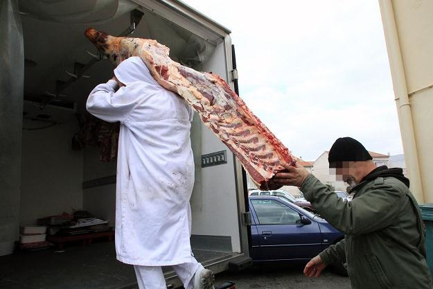 Na eksport trafia rocznie 25-30 tys. koni z Polski /AFP