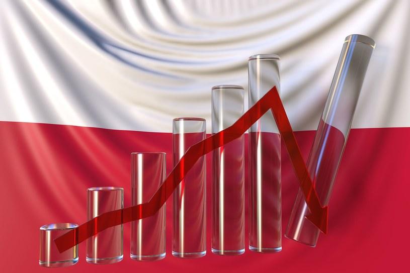 Na jak długo starczy sił polskiej gospodarce /123RF/PICSEL