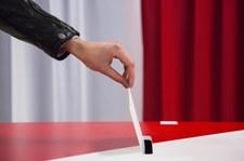 Na kogo zagłosują Polacy w wyborach samorządowych? Sondaż