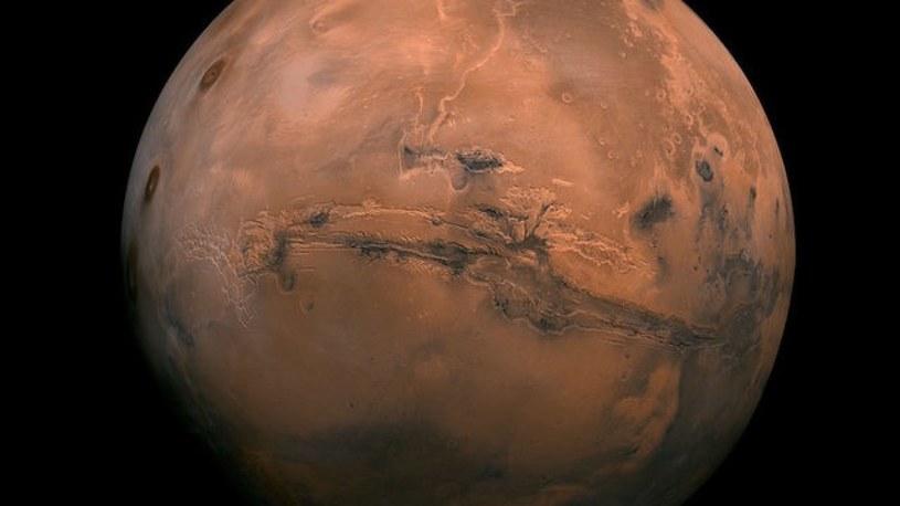 Na Marsie faktycznie do dziś może występować życie /123RF/PICSEL