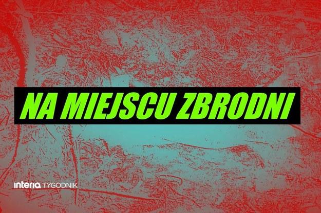Na Miejscu Zbrodni /Interia.pl /INTERIA.PL