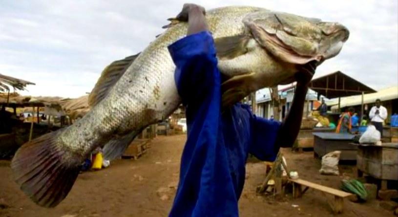 Randki z ugandą