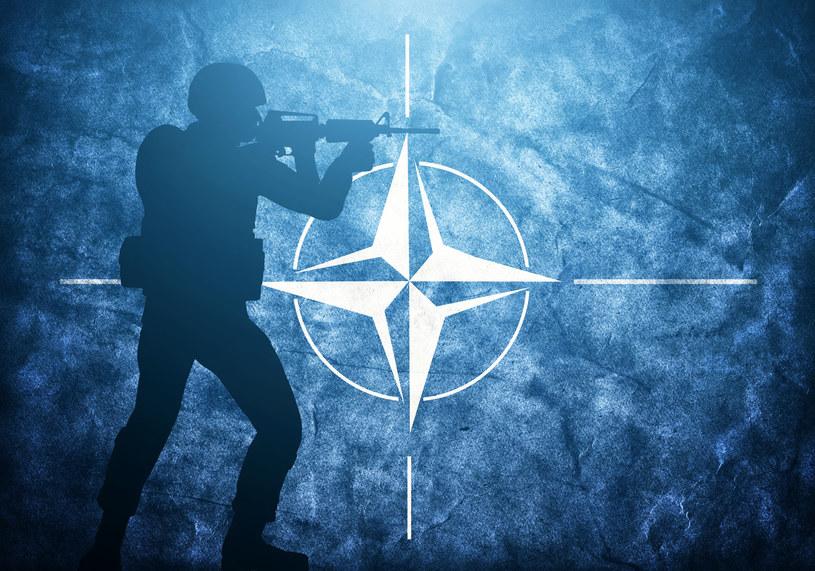 Na nadchodzącym szczycie NATO cyberprzestrzeń może zostać oficjalnie zakwalifikowana jako piąty obszar działań wojennych /123RF/PICSEL