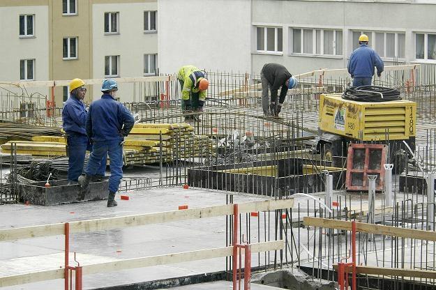Na niemieckim rynku pracy jest duże zapotrzebowanie na budowlańców /© Bauer
