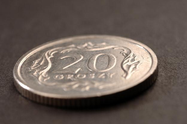 Na notowania polskiej waluty negatywnie wpływa pogorszenie nastrojów na świecie /© Panthermedia