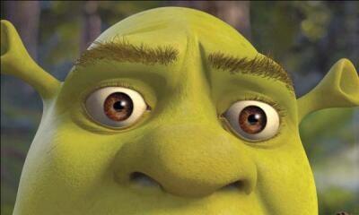 Na nowego Shreka musimy poczekać do przyszłego roku /