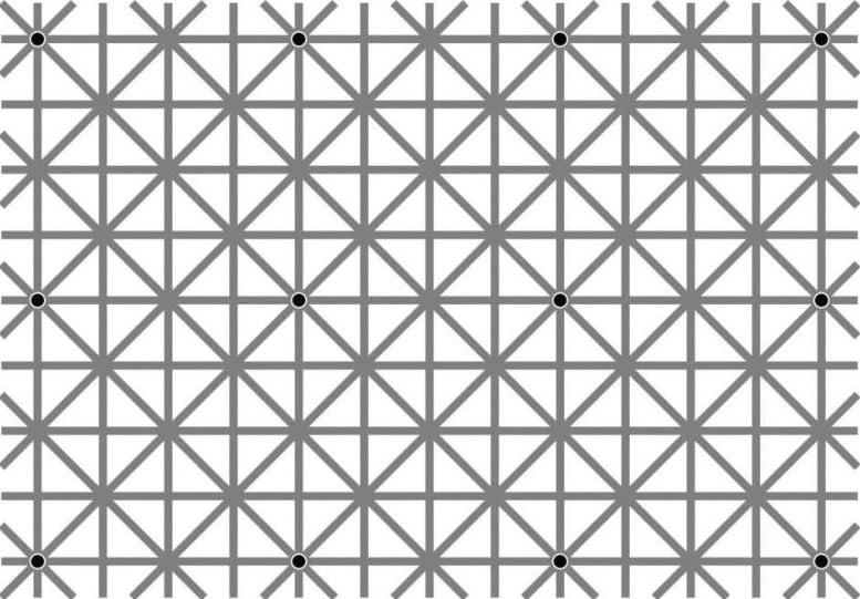Na obrazku znajduje się 12 czarnych kropek /Internet