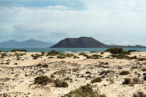 Na plaży Fuerteventury /© Panthermedia