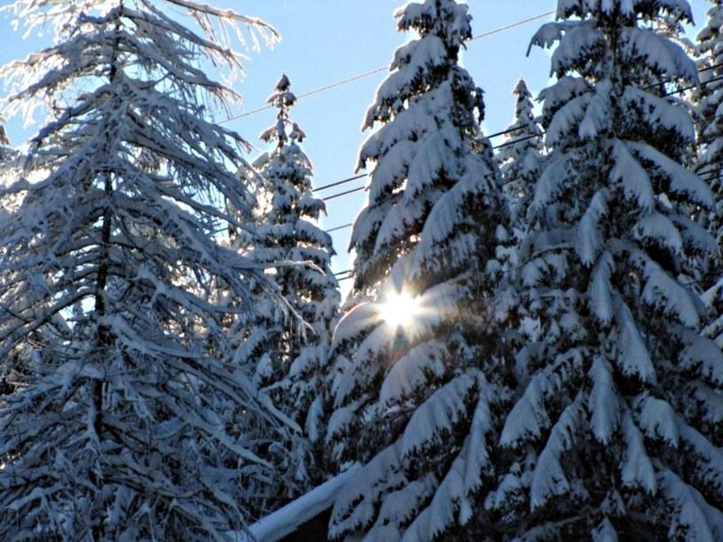 Na Podhalu mimo halnego i odwilży można jeszcze pojeździć na nartach /RMF