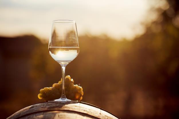 Na Podkarpaciu odradza się winiarska tradycja /©123RF/PICSEL