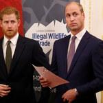 Na pogrzebie księcia Filipa dojdzie do pojednania Williama i Harry'ego?