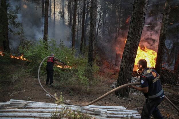 Na południu Turcji szaleje już ponad setka pożarów /ERDEM SAHIN /PAP/EPA