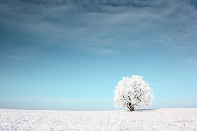 Na prawdziwą zimę będziemy jeszcze musieli poczekać (zdj. ilustracyjne) /123RF/PICSEL