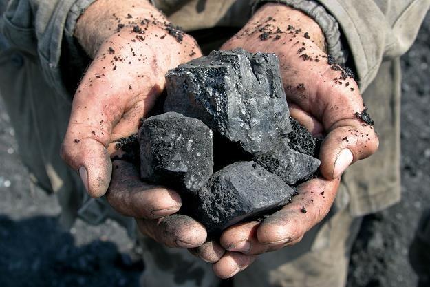 Na ratowaniu górnictwa rząd stracił 30 miliardów zł /©123RF/PICSEL