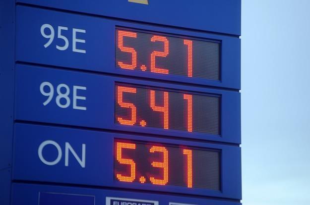 Na razie nie musimy obawiać się wzrostu cen / Fot: Wojciech Stróżyk /Reporter