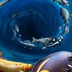 Na Ryby: Ciekawa propozycja dla fanów wędkarstwa