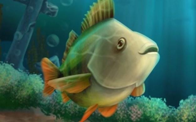 Na Ryby /materiały prasowe