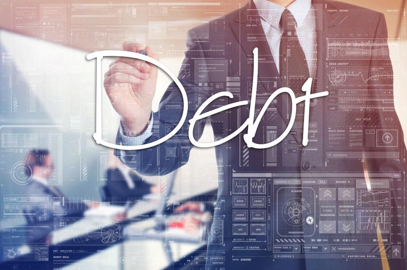 Na rynku dostępnych jest wiele rodzajów obligacji /123RF/PICSEL