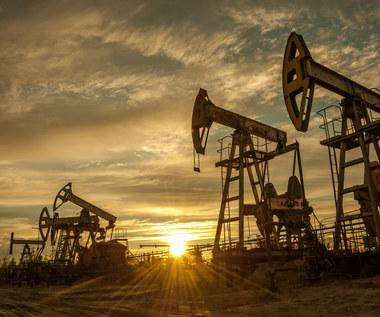 Na rynku ropy jak w kinie akcji