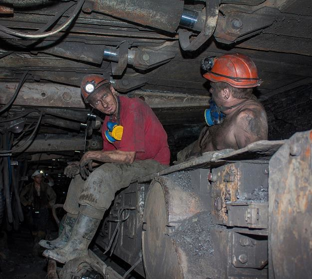 Na Ślasku od września zakaz używania najbrudniejszych paliw (w tym mułów) /©123RF/PICSEL