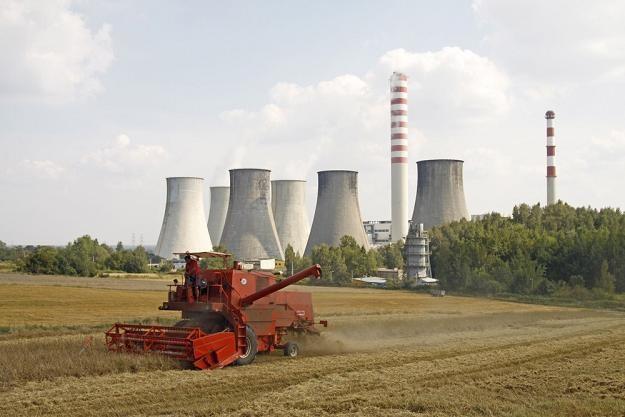 Na Śląsku za dużo ludzi pracuje w rolnictwie. Fot. Adrian Slazok /Reporter