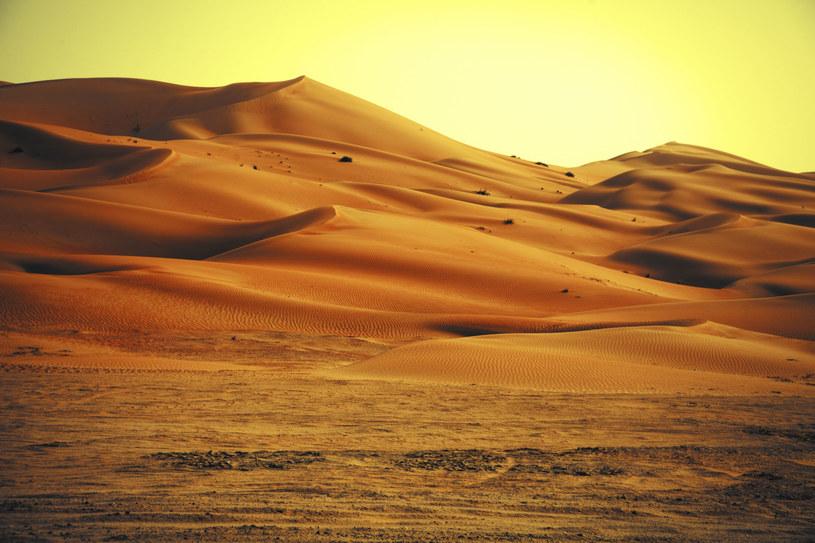 Na świecie może być więcej takich miejsc jak Sahara /123RF/PICSEL