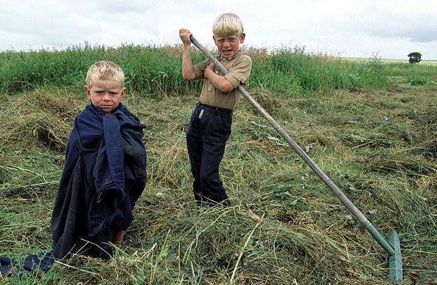 Na świecie nawet 150 mln dzieci pracuje /Wojtek Laski /Super Express