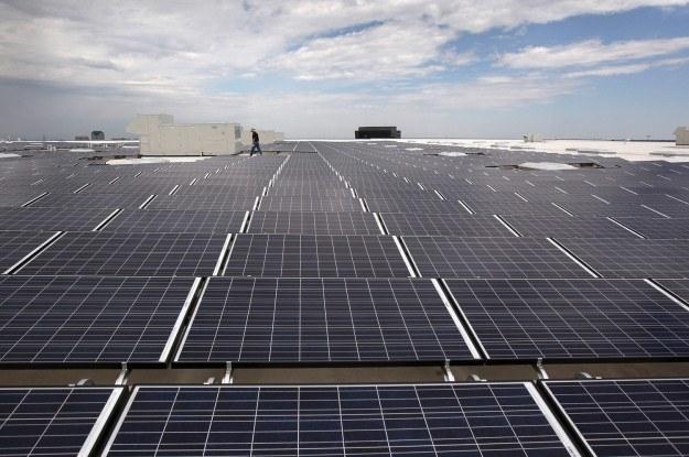 Na świecie powstaje coraz więcej farm słonecznych /AFP