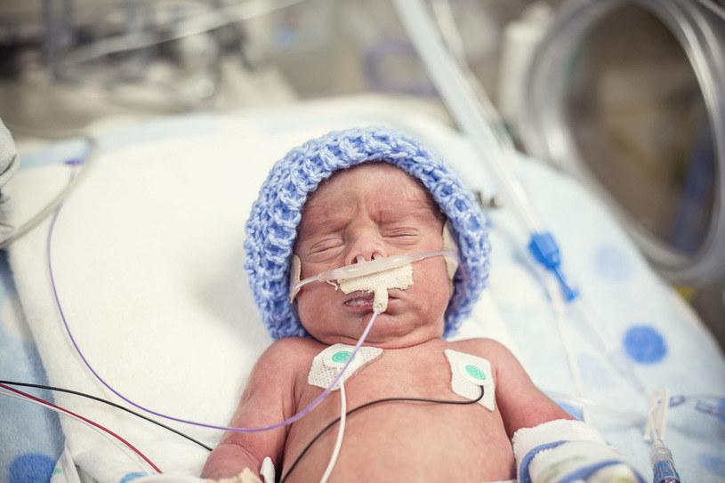Na szczęście większość dzieci z trudnych, powikłanych ciąż udaje się uratować /123RF/PICSEL