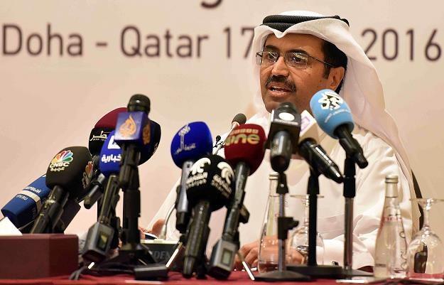 Na szczycie w Doha nie doszło do porozumienia /AFP