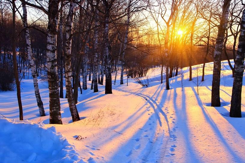 Na taką zimę w całej Polsce jeszcze poczekamy... /123RF/PICSEL