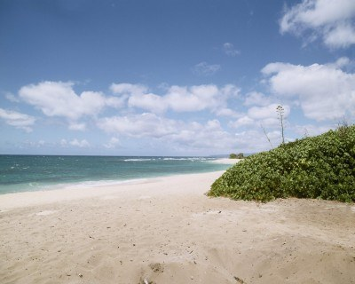 """Na tej plaży rezydują """"Zagubieni"""" - fot. AXN /"""