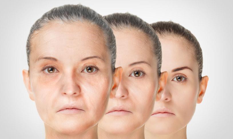 Na ten moment nie jesteśmy w stanie zahamować procesu starzenia się /123RF/PICSEL