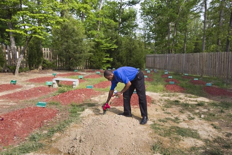Na tym cmentarzu pochowano Tamerlana Carnajewa /PAP/EPA