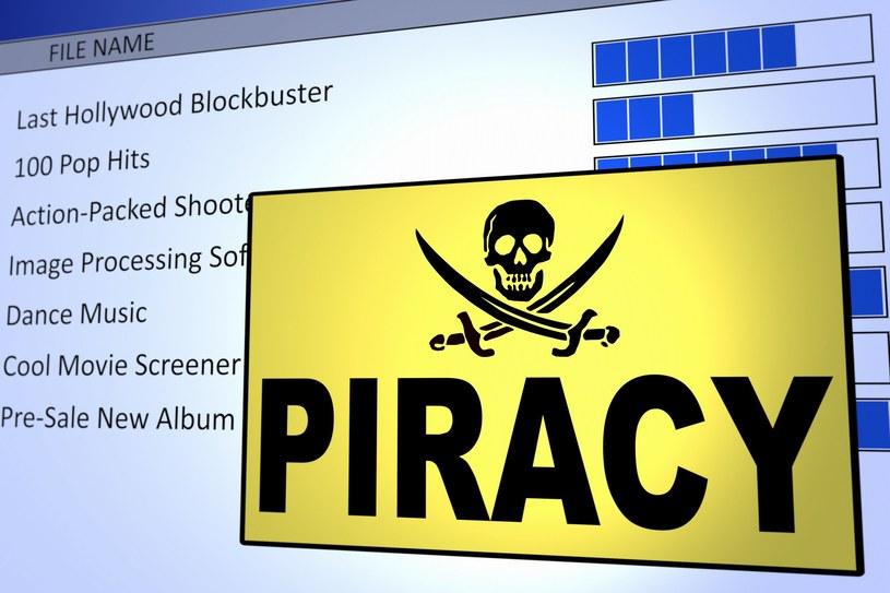 Na wniosek jednego z polskich producentów filmów, policja ma konfiskować komputery osób, które nielegalnie pobrały ich produkcję /123RF/PICSEL