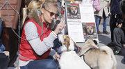 """""""Na Wspólnej"""": Marta Wierzbicka zachęca do pomagania zwierzętom przez internet"""