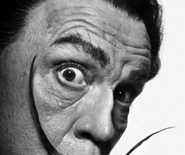 Na wystawie można zobaczyć 35 zdjęć. Kolorowych i czarno-białych, wykonanych różnymi technikami i prezentowanych w rozmaitych formatach. Projekt został zaprezentowany po raz pierwszy pod koniec roku 2014 w Chicago, w galerii Catherine Edelman, i od tego czasu z ogromnym sukcesem podróżuje po świecie.  John Malkovich jako Salvador Dali z fotografii Philippe'a Halsmana (1954).