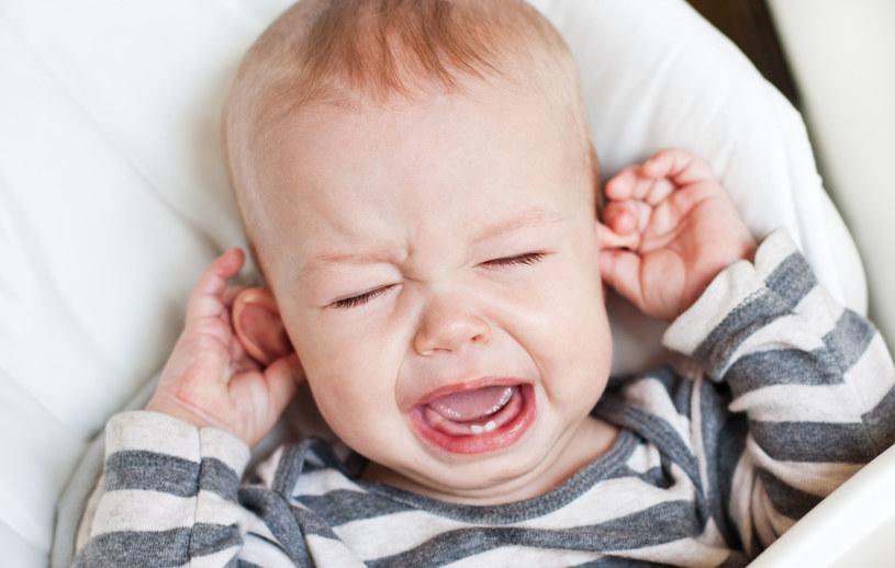 Na zapalenie uszu najczęściej chorują maluchy uczęszczające do żłobków i przedszkoli, z osłabioną odpornością i nawracającymi infekcjami dróg oddechowych /123RF/PICSEL