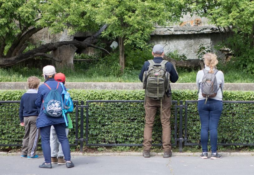 Na zdj. ogród zoologiczny w Warszawie /Tomasz Jastrzebowski/REPORTER /Reporter